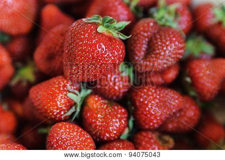 Many Large Ripe Sweet Strawberry