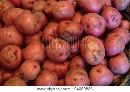Red New Potato Background