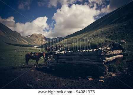Mountain Landscape With Horses.