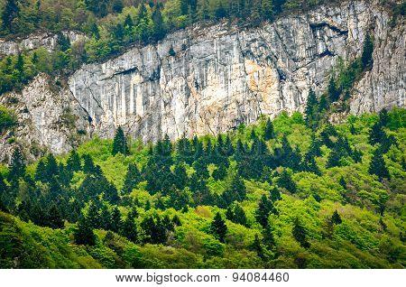 Trentino Alto Adige, Alps Detail