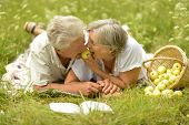stock photo of amusement  - Amusing old couple on picnic eating apples on grass - JPG