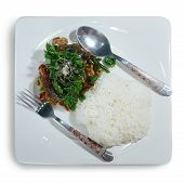 picture of crispy rice  - STIR FRIED CRISPY BASIL WITH PORK AND BLACK PRESERVED EGGS on rice  - JPG