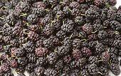 image of mulberry  - Heap fresh organic mulberry closeup background berries - JPG