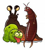picture of caterpillar  - Group of three cartoon garden pest - JPG