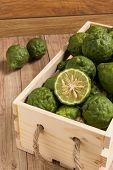 pic of dandruff  - Bergamots put together in a wood box - JPG