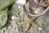 image of pale  - beach scene with green flip flops sand shells starfish shovel and pale - JPG