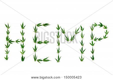 Word HEMP made of green leaves isolated on white background