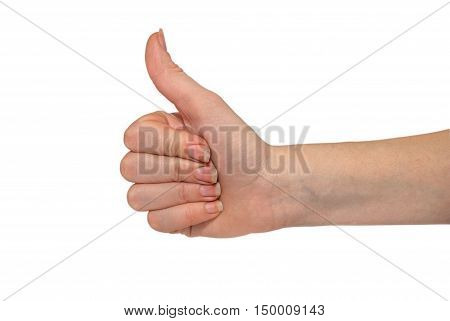 hand shows thumbs up isolated on white backgraund