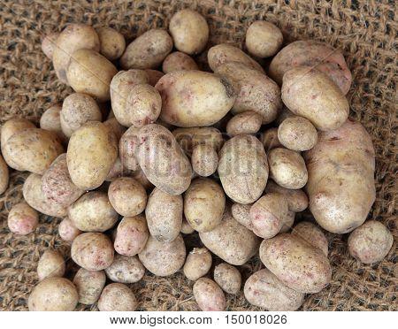 Many Genuine Organic Raw Potatoes For Sale