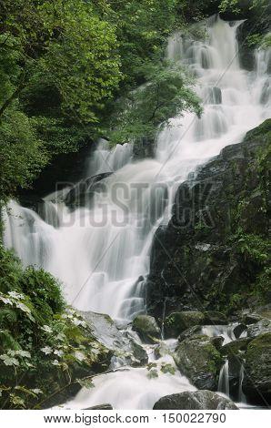 Torc Waterfall in Killarney National Park, County Kerry, Ireland, Europe