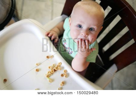 A six month old baby girl is sitting in her high chair at home eating breakfast cereal by finger feeding herself.