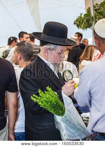 JERUSALEM, ISRAEL - OKTOBER 8, 2014: Traditional market before the holiday of Sukkot. Orthodox Jew with a white beard in a black hat chooses citrus - etrog