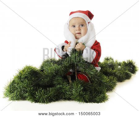 An adorable baby Santa sitting in a pile of green garland.  On a white background.