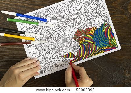 Antistress Coloring Book For Adults.