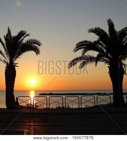 Horison on the sea. Sea in evening. Palms in sunset.