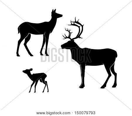 Silhouettes of the deer on white background. Deer doe fawn. Deer family set