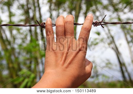 Close up of hands holding wire fence for freedom