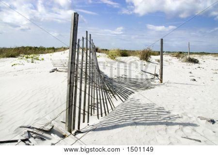 Open Border