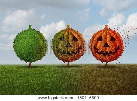 Halloween season concept as a green tree transforming into an orange jack o lantern autumn leaves plant as a seasonal fall symbol for a festive celebration of trick or treat time and thanksgiving with 3D illustration elements.
