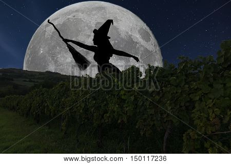 Halloween Witch Silhouette Flying With Broomstick. Full Moon Vineyard.