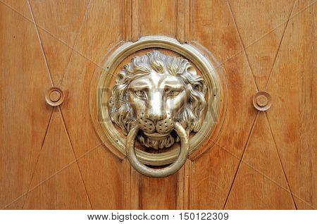 Door knocker handle - lion head .