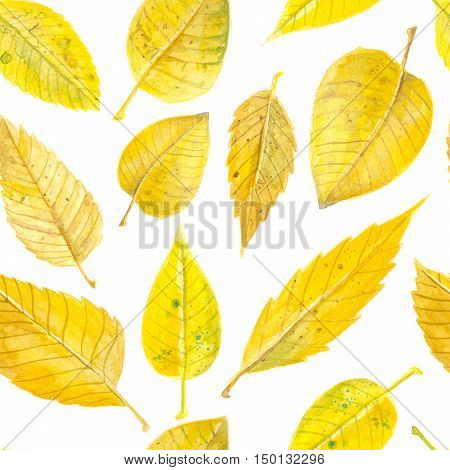 Yellow autumn leaves. Watercolor seamless pattern design.