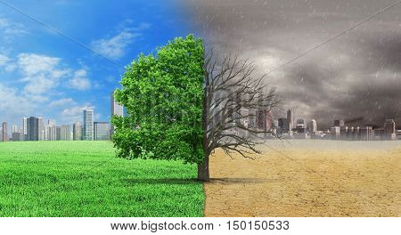 The concept of climate has changed. Half alive and half dead tree standing at the crossroads of climate change on city background. Save the environment.
