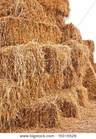 Big Pile Of Straw