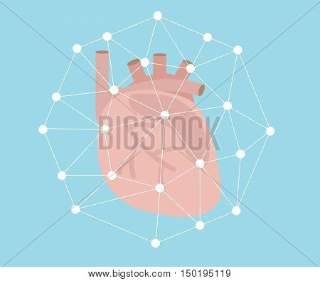 protect hearth concept heart anatomy with white line flat design vector illustration