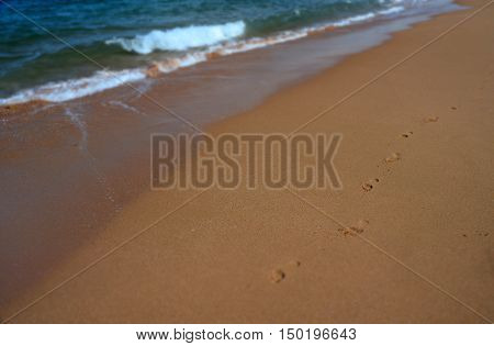 Foot print in the sand at the beach background