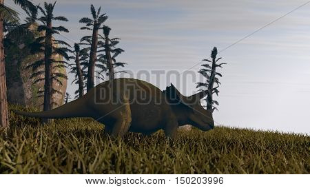 3d illustration of the grazing triceratops