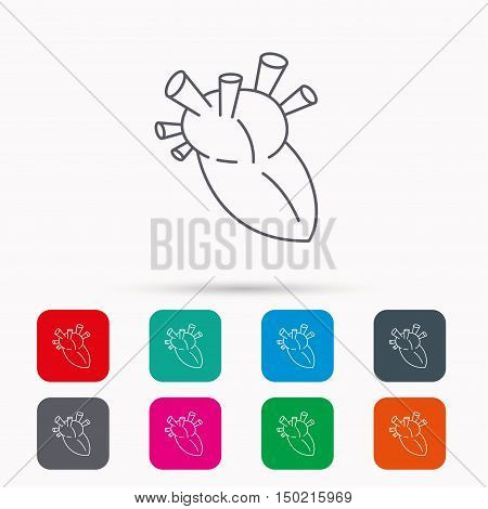 Heart icon. Human organ sign. Surgical transplantation symbol. Linear icons in squares on white background. Flat web symbols. Vector