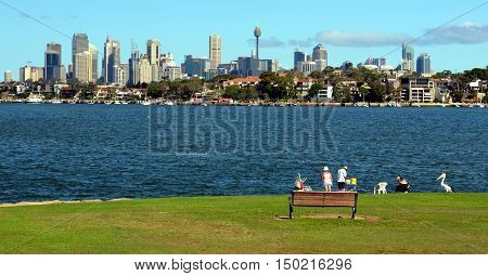 View of Sydney skyline in daytime from Woolwich NSW Australia. Couple fishing in the foreground Sydney skycrapers in the background. Pelican waiting for fish.