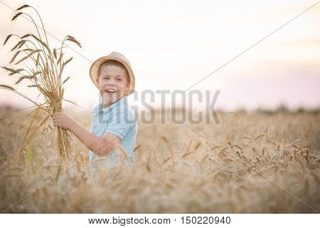 Portrait of cute kid boy in straw hat walking in the golden wheat field on sunny summer day. Smiling child with ears of wheat on a meadow. Lifestyle concept