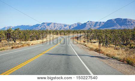 Highway makes right turn in Nevada desert