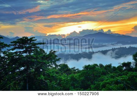 Sunrise over Danum Valley jungle in Sabah Borneo Malaysia. Danum Valley Conservation Area is a 438 square kilometres tract of relatively undisturbed lowland dipterocarp forest.