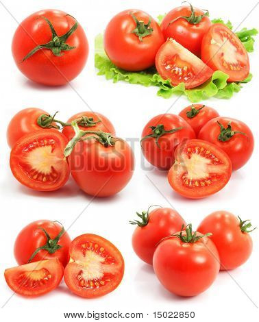red tomato vegetable fruits set isolated on the white background
