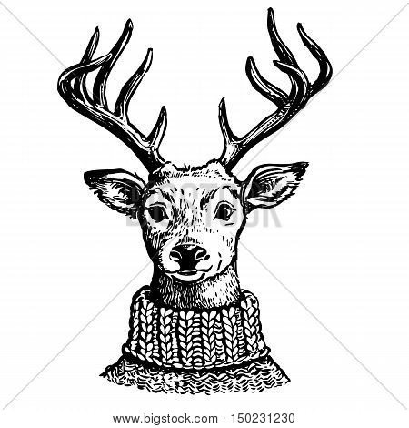 Hand drawn pen and ink vector drawing of a reindeer head. Funny hipster vintage style portrait illustration of a deer dressed in knitted turtleneck sweater isolated on white background.