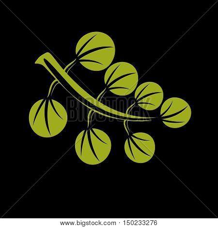 Single Vector Flat Green Leaf. Herbal And Botany Art Symbol, Spring Season Stylized Ecology Icon. En