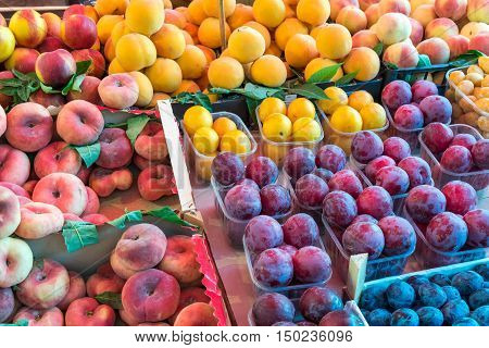 Different kinds of peaches and plums for sale at a market