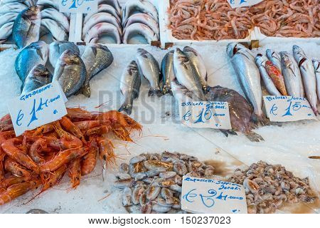 Fish and seafood at the Vucciria market in Palermo