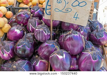 Fresh round eggplant for sale at a market in Palermo, Sicily