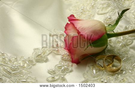 Roses And Rings On A Bridal Gown