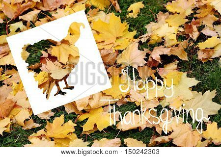 Greeting card Thanksgiving. On the background of fallen leaves-cut silhouette of a Turkey and words.
