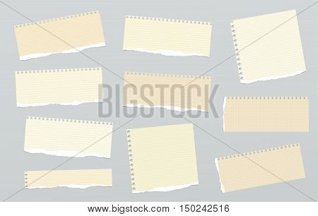 Pieces of light brown ruled torn note paper stuck on grey background.