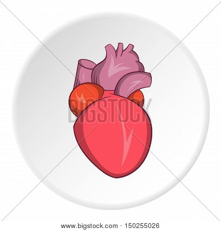 Heart human icon in cartoon style isolated on white circle background. Human organs symbol vector illustration