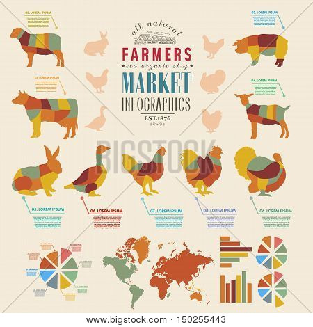 Farm infographics farm animals chickens cows sheep goats geese turkeys design elements of livestock vector illustration