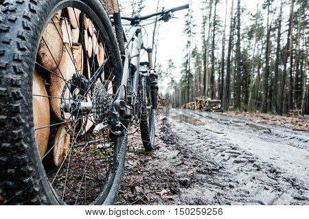Mountain bike wheel in wet autumn woods dark forest landscape. Cycling MTB on enduro trail track. Sport fitness motivation and inspiration.