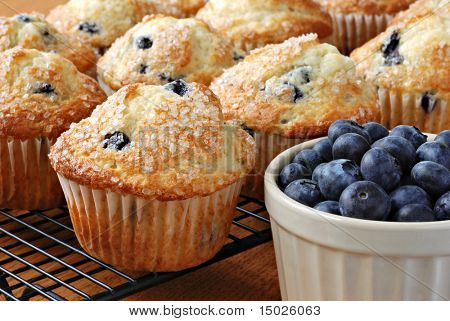 Freshly baked blueberry muffins on cooling rack with dish of blueberries.  Macro with shallow dof.