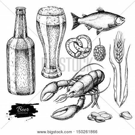 Beer vector set. Alcohol beverage hand drawn illustration. Beer glass mug wooden mug bottle barrel snack hop wheat fish crayfish Great for bar pub menu oktoberfest